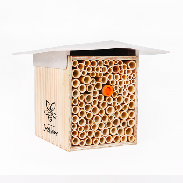 BeeHome : adopter des abeilles sauvages