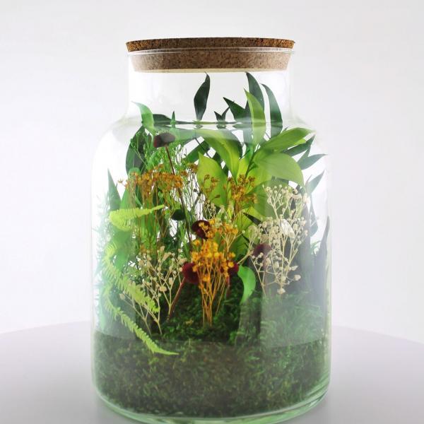 Kit DIY Terrarium Floral